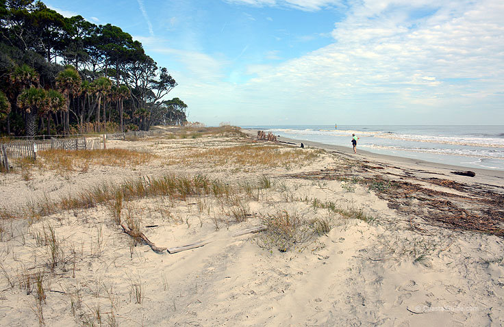 The beach at Hunting island State Park