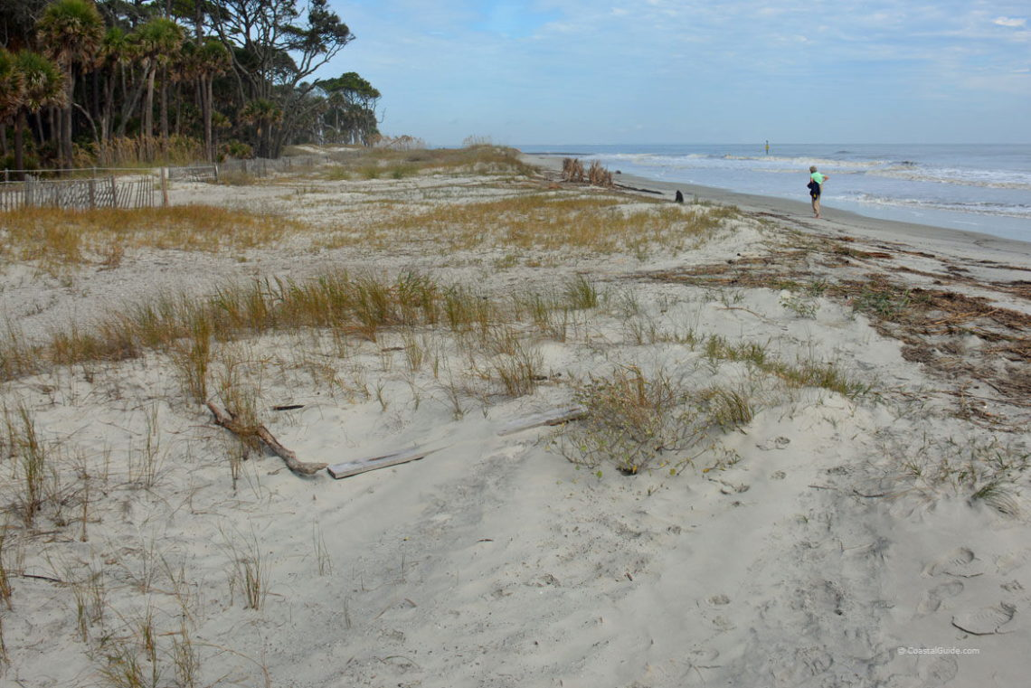 Hunting Island State Park